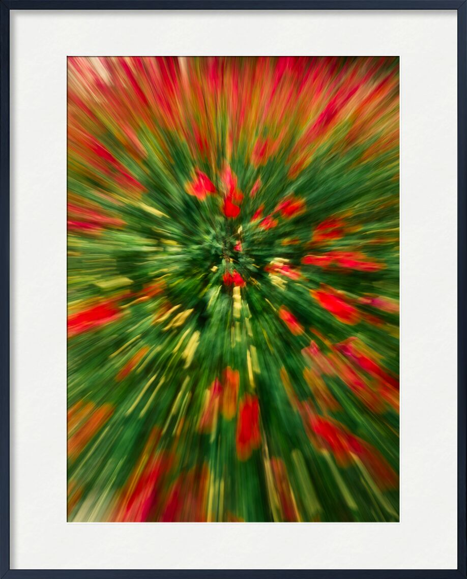 Le massif de fleurs rouges de Céline Pivoine Eyes, Prodi Art, Photographie abstraite, art abstrait, flou artistique, paysage, nature, fleurs, Mouvement intentionnel de la caméra, ICM