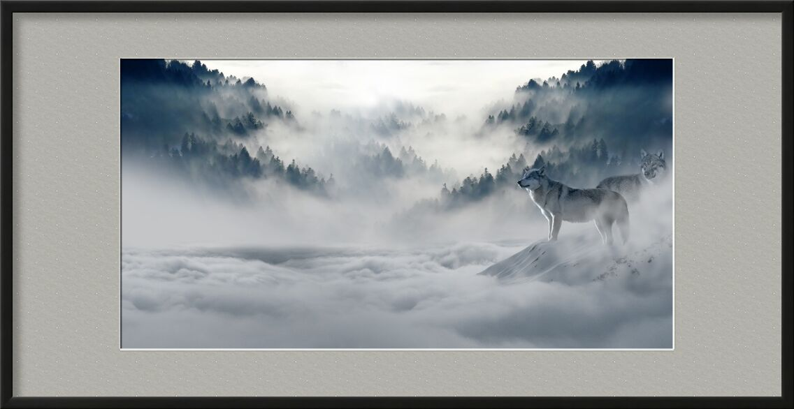 Solitary Wolves from Pierre Gaultier, Prodi Art, fairy tales, magic, magic forest, fir forest, mystical, firs, atmospheric, idyllic, wintry, winter, forest, trees, freezing, cold, winter mood, fog, clouds, mood, nature, valley, mountains, pack, snow, wild animal, predator, animal world, atmosphere, landscape, snow wolf, wolves, wolf
