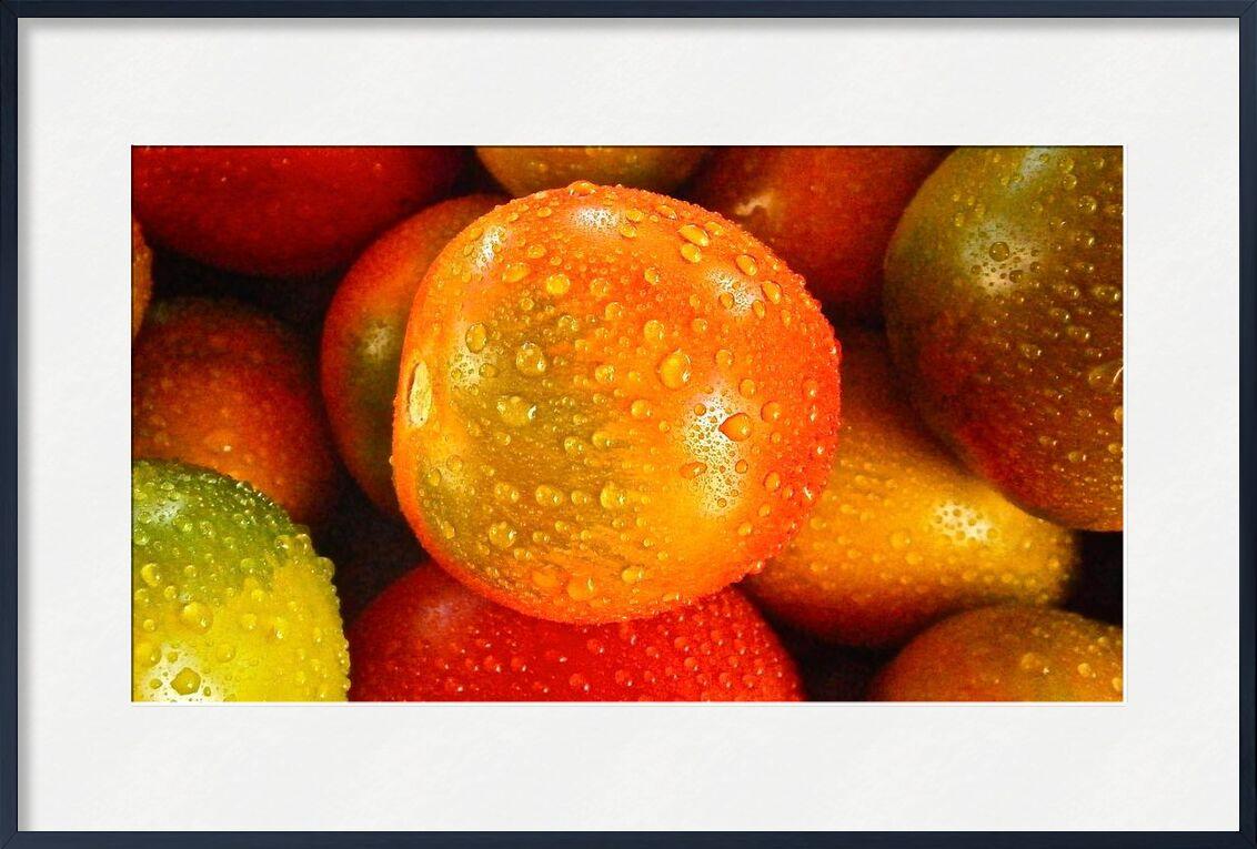Tomates mouillées de Pierre Gaultier, Prodi Art, gouttes d'eau, humide, des légumes, tomates, macro, Ingrédients, en bonne santé, fruits, Frais, nourriture, Couleur