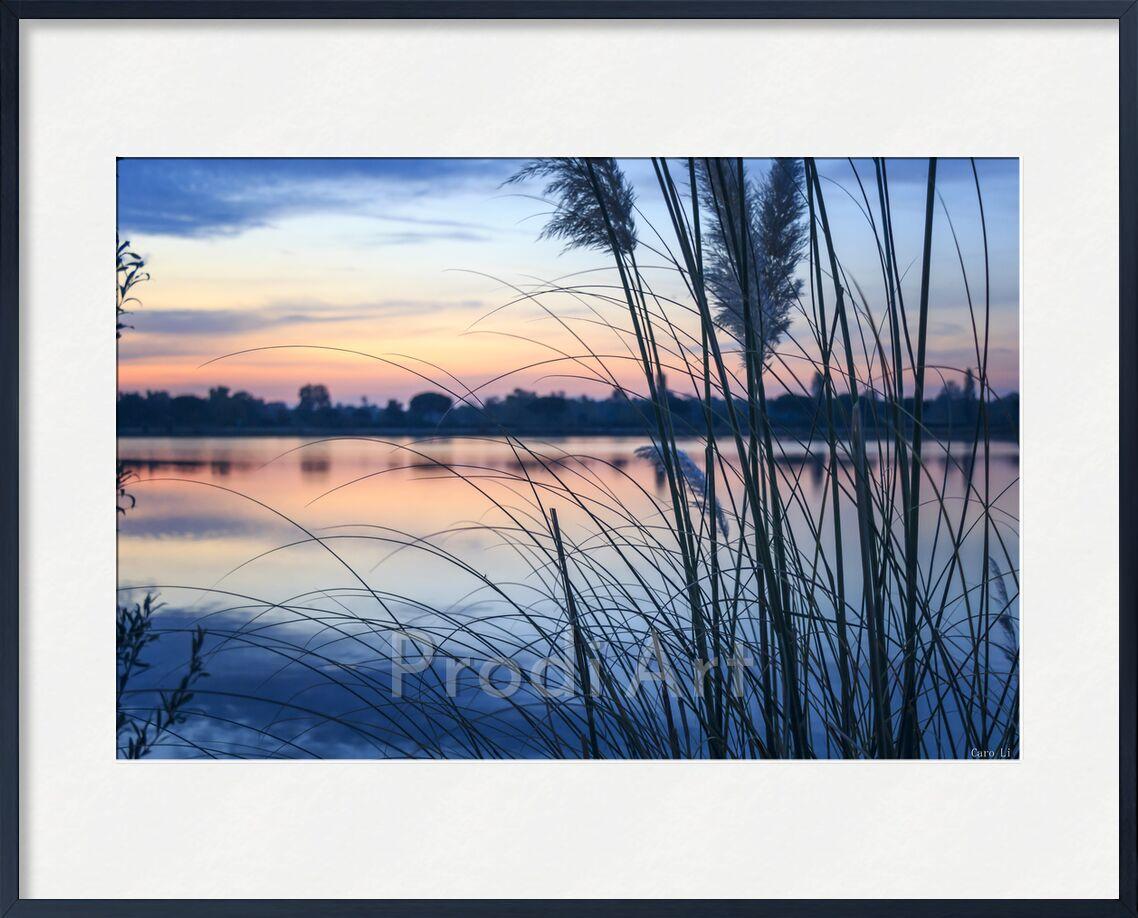 Aurore de Caro Li, Prodi Art, paysage, paysage, Photographie, Aube, aurore, levé de soleil, lever du soleil