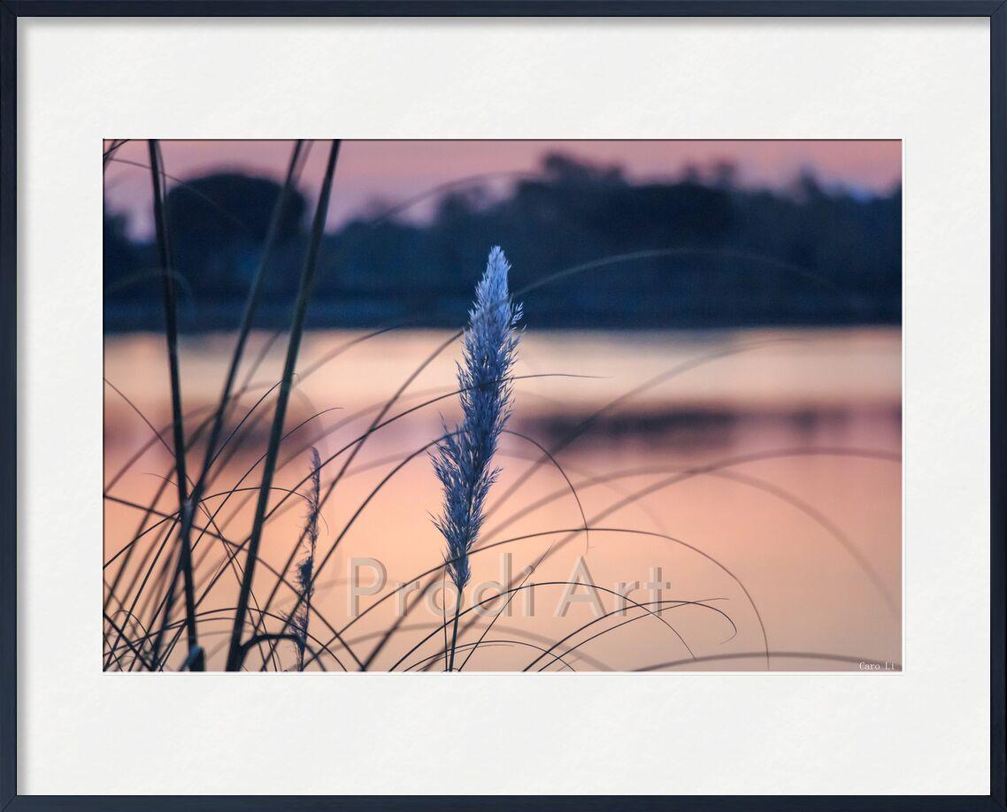 Aurore de Caro Li, Prodi Art, Photographie, paysage, Aube, lever du soleil, aurore, levé de soleil