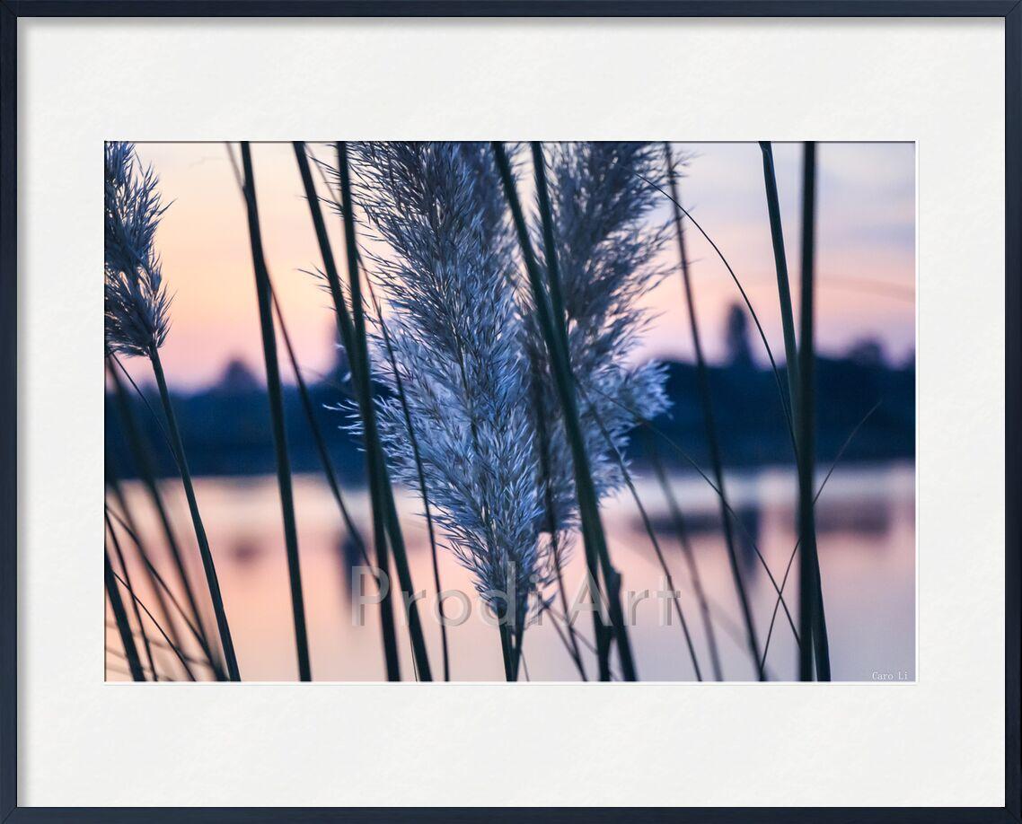 Aurore de Caro Li, Prodi Art, Photographie, aurore, Aube, levé de soleil, lever du soleil, paysage, paysage