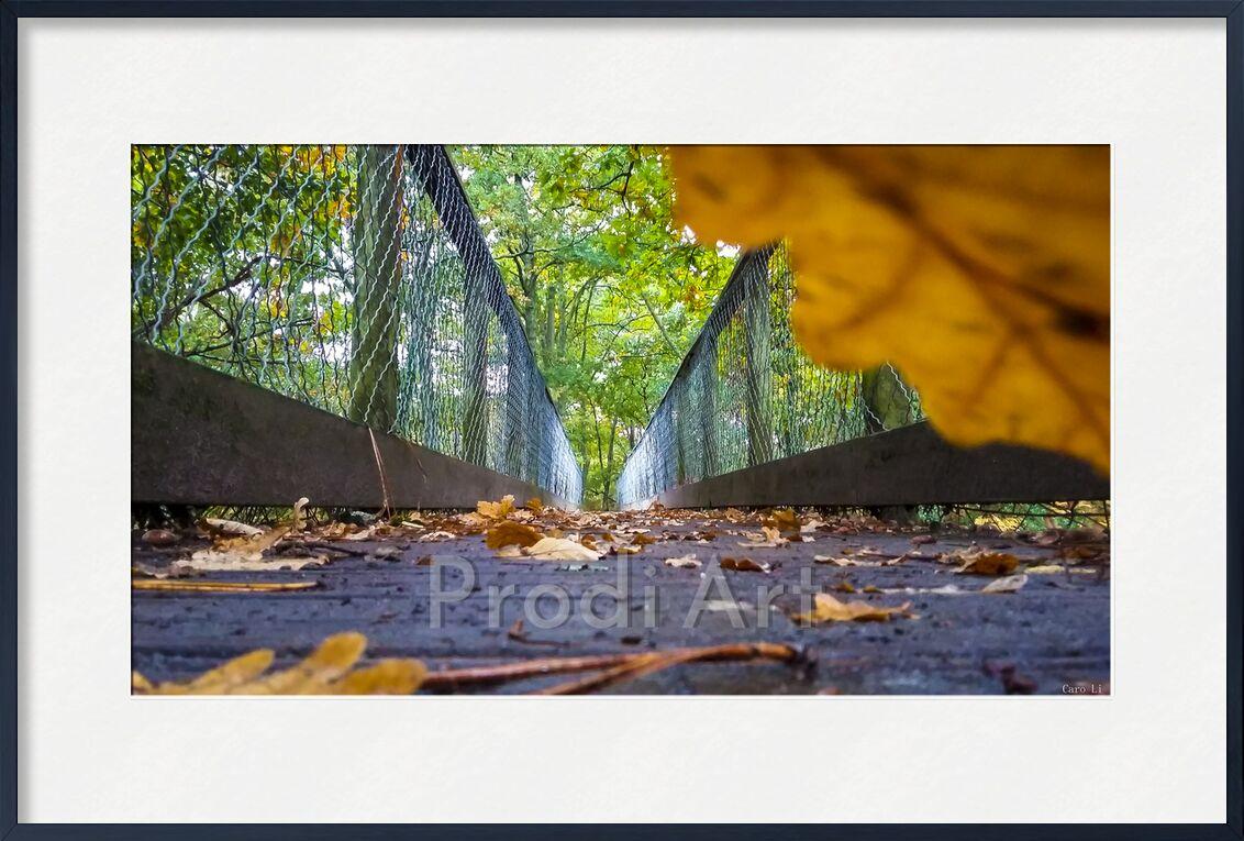 The Way de Caro Li, Prodi Art, pont, façon, chemin, pont, nature, paysage, feuille, Photographie