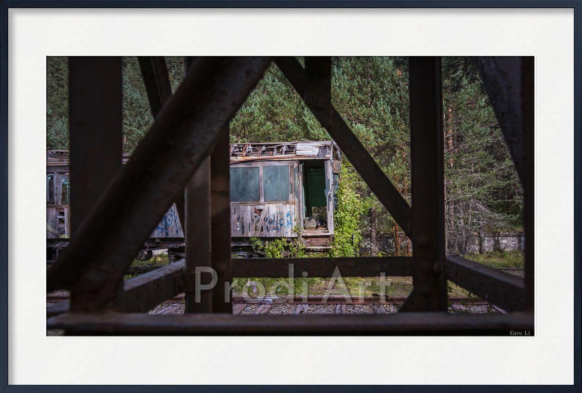The Train de Caro Li, Prodi Art, Urbex, train