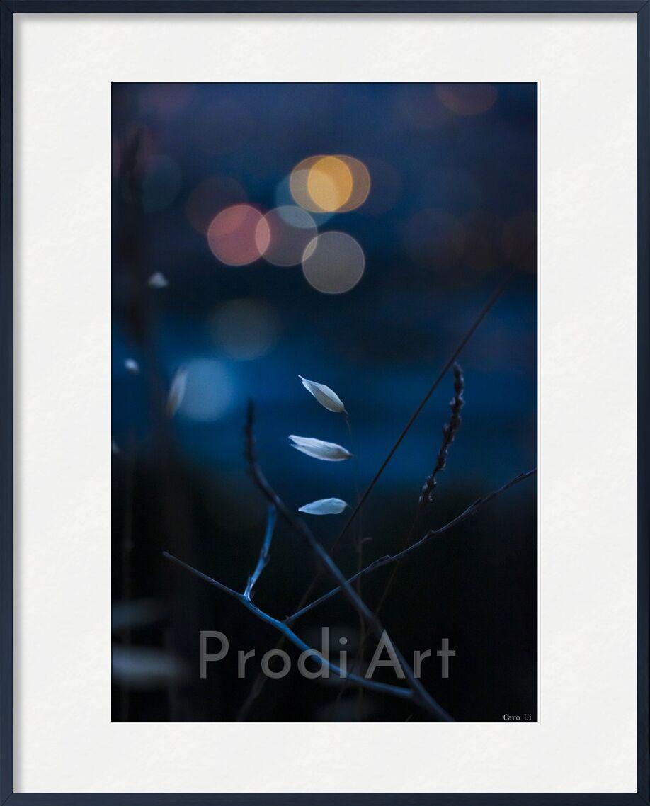 Dream de Caro Li, Prodi Art, nuit, nuit, paysage, paysage, fleurs, rêver