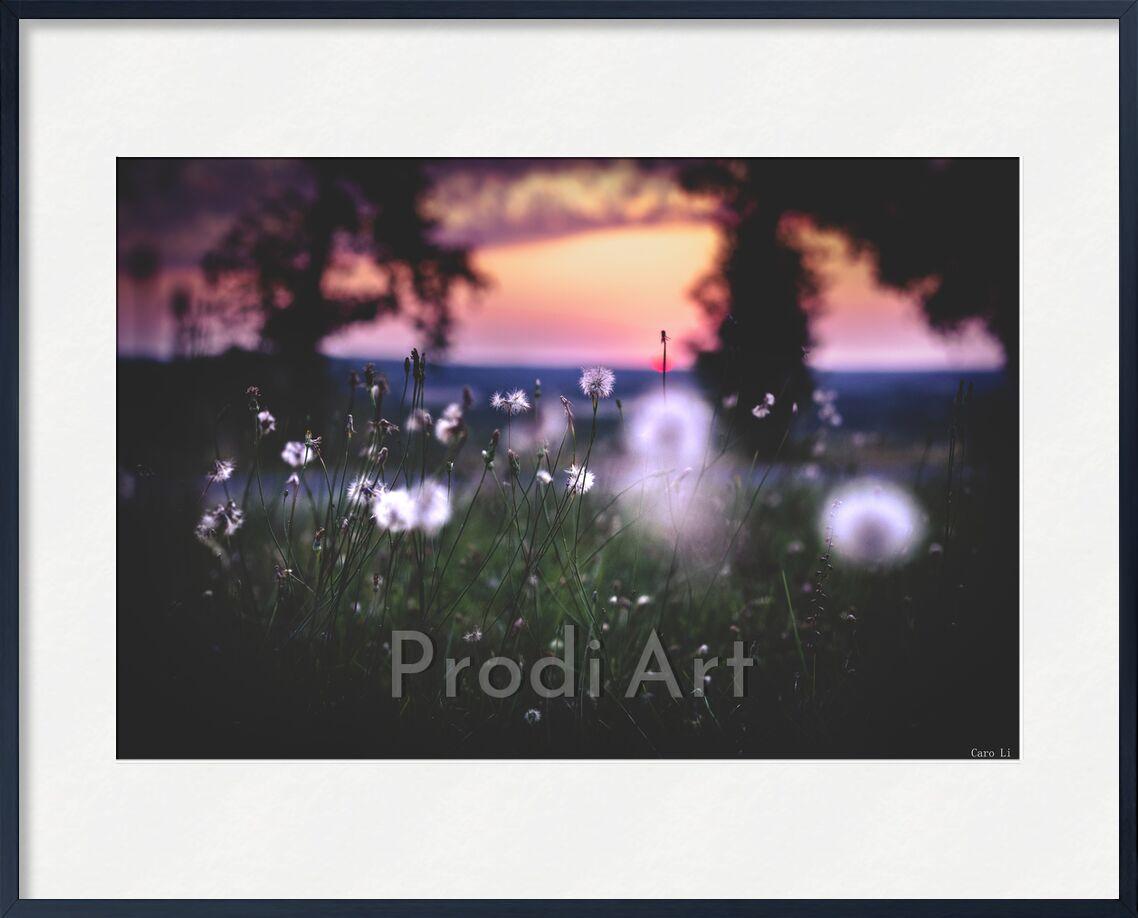 Chimères de Caro Li, Prodi Art, fleurs, fleurs, couché de soleil, coucher de soleil, rêver, paysage, paysage, chimères