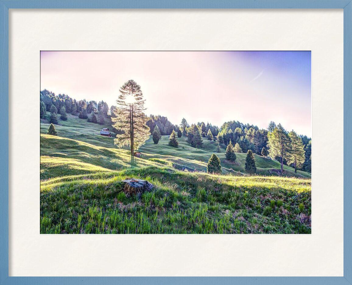 Lumière du jour de Aliss ART, Prodi Art, prairie, les bois, région sauvage, des arbres, soleil, rural, en plein air, fond d'écran nature, nature, montagnes, paysage, maison, HD wallpaper, herbe, forêt, champ, lumière du jour, campagne, Pays, nuages