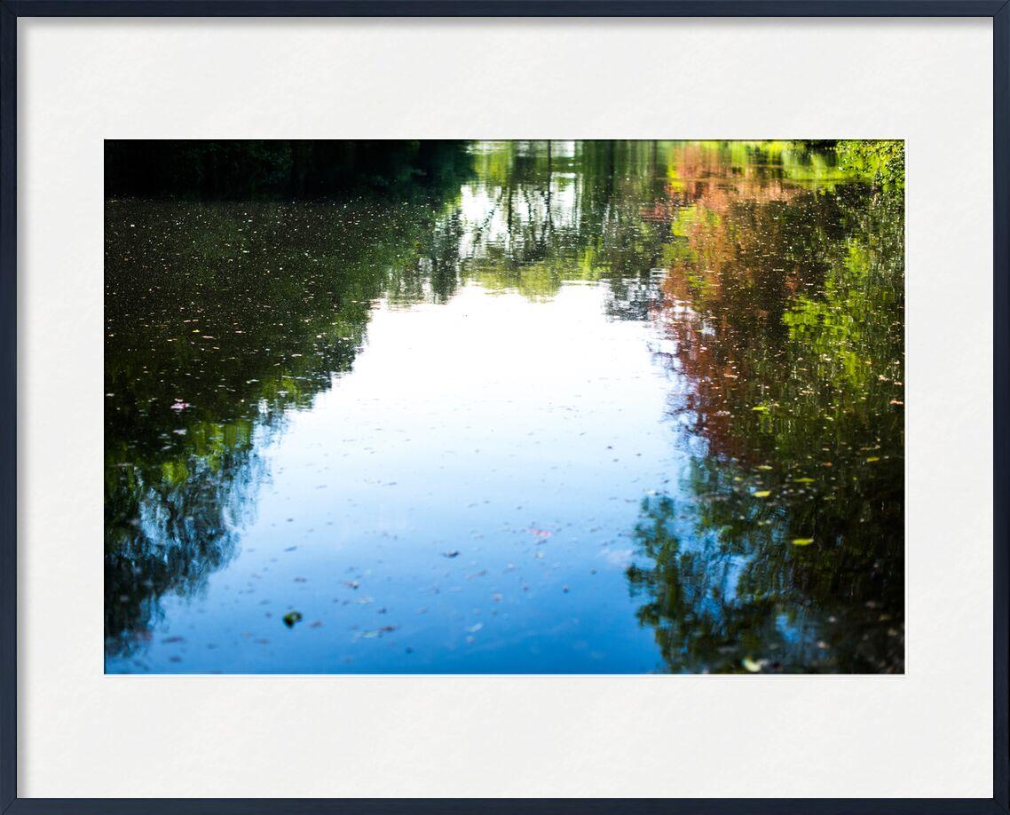 Le monde à l'envers de Marie Guibouin, Prodi Art, reflet, eau, arbres, marie guibouin, bleu, vert, nature