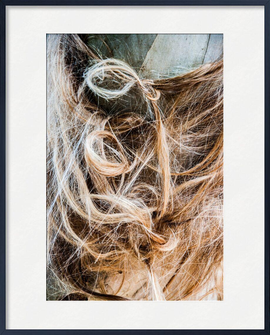 Enchevêtrement capillaire de Marie Guibouin, Prodi Art, chevelure, nature, arbre, coiffure, cheveux, marie guibouin, eucalyptus