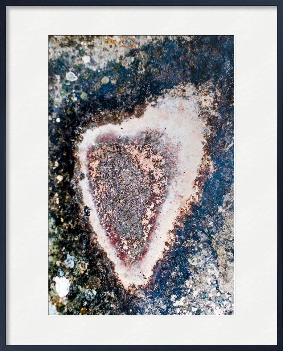 Amour toujours de Marie Guibouin, Prodi Art, saint valentin, nature, marie guibouin, amour, coeur