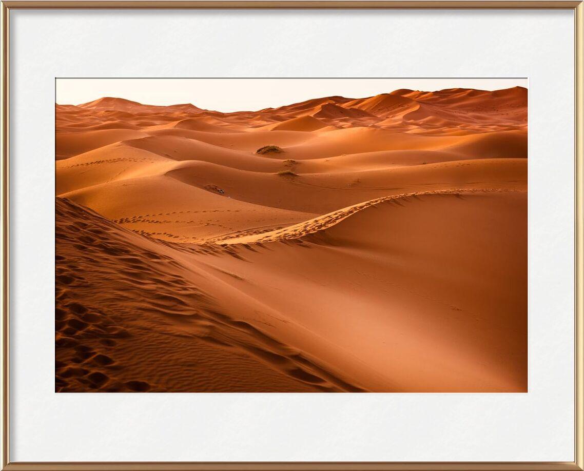 Merzouga de Aliss ART, Prodi Art, Aube, désert, dune, or, chaud, paysage, maroc, sable, soleil, couché de soleil, Voyage, sec, Marrakech, dune de sable