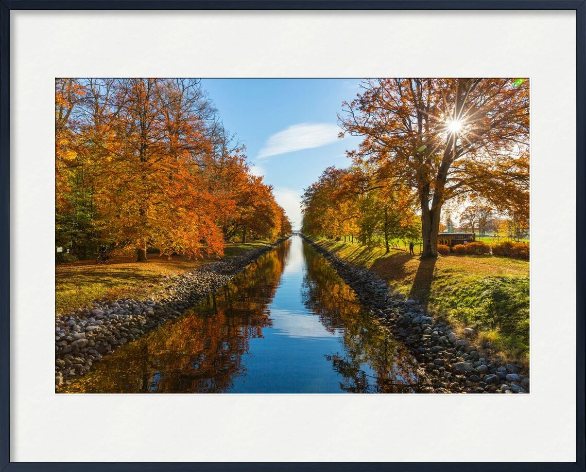 Éblouissement from Aliss ART, Prodi Art, channel, nature, outdoors, park, River, scenic, stones, sun glare, trees, water, pebbles