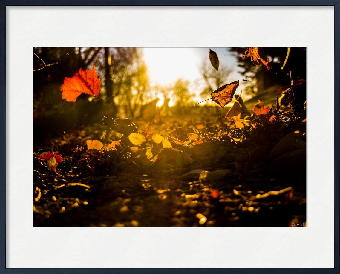 Automne de Caro Li, Prodi Art, soleil, soleil, feuilles, évents, automnes
