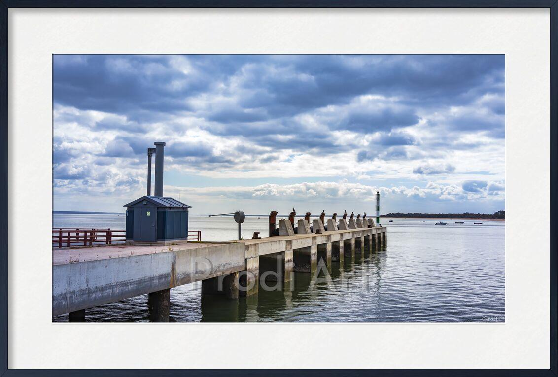 Embarcadère de Caro Li, Prodi Art, mer, bateau, océan, Port, mer, pont, embarcadère