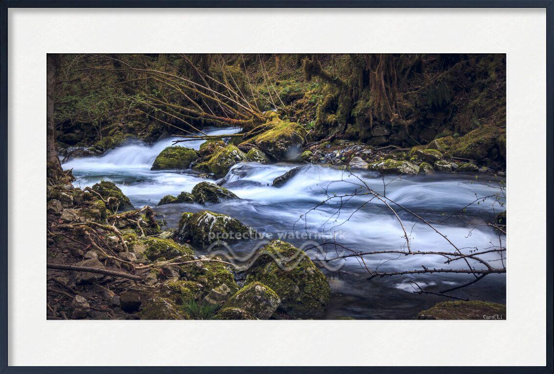 The river de Caro Li, Prodi Art, arbre, rivière, nature, fleuve