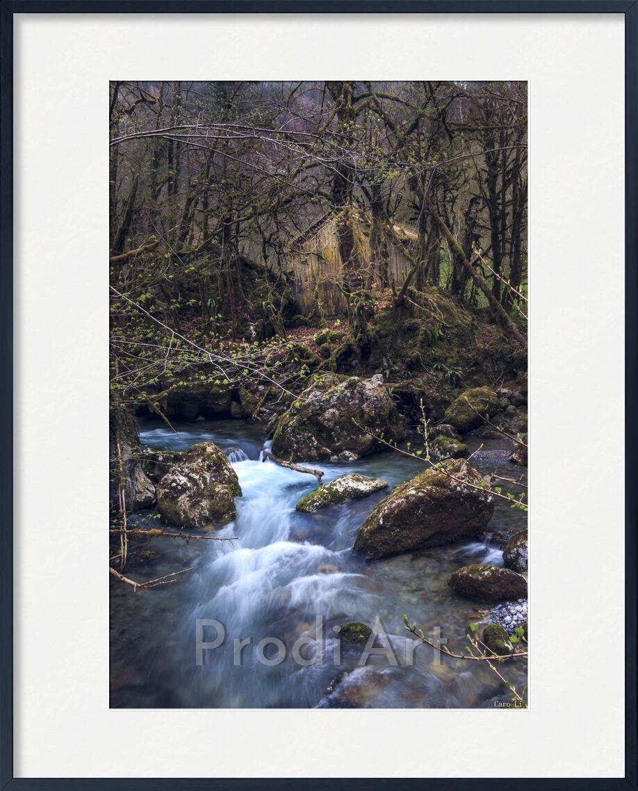 The House de Caro Li, Prodi Art, maison, maison, rivière, fleuve, nature