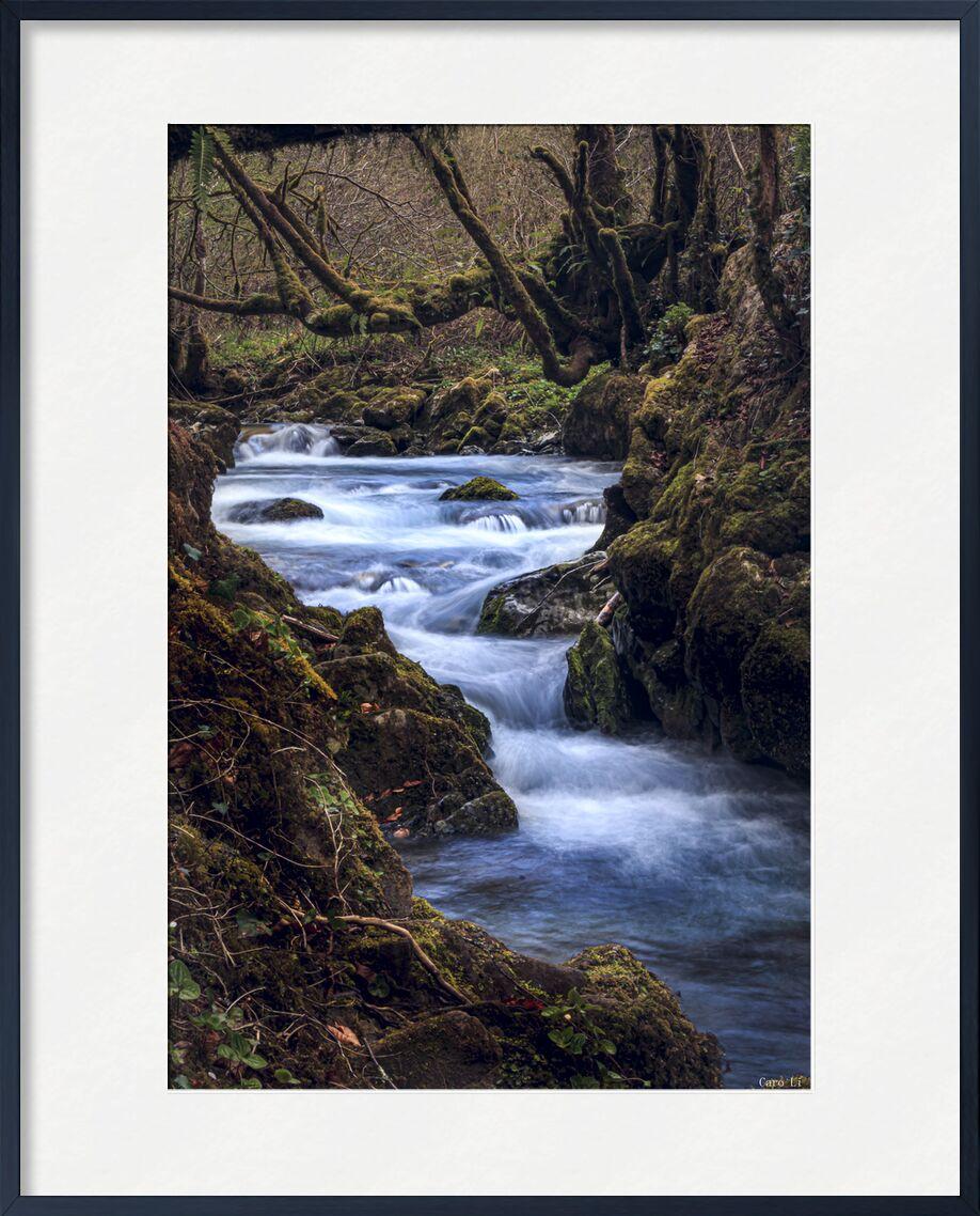 The River de Caro Li, Prodi Art, paysage, paysage, nature, fleuve, rivière