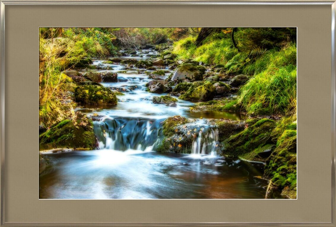 Splendeur profonde de Aliss ART, Prodi Art, rapides, écoulement, Cascade, des arbres, courant, des pierres, des roches, fleuve, en plein air, nature, mouvement, feuilles, paysage, couler, environnement, ruisseau, Cascade