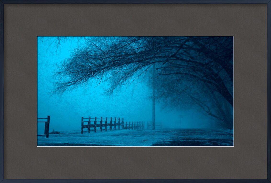 ضباب from Aliss ART, Prodi Art, cold, dark, fog, frozen, ice, lake, landscape, outdoors, reflection, scenic, snow, street, trees, weather, winter, eerie, fear, fence, foggy, mystery, pathway, pole, road