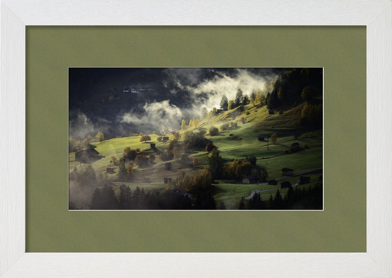 ضباب على التل from Aliss ART, Prodi Art, trees, nature, landscape, hills, fog