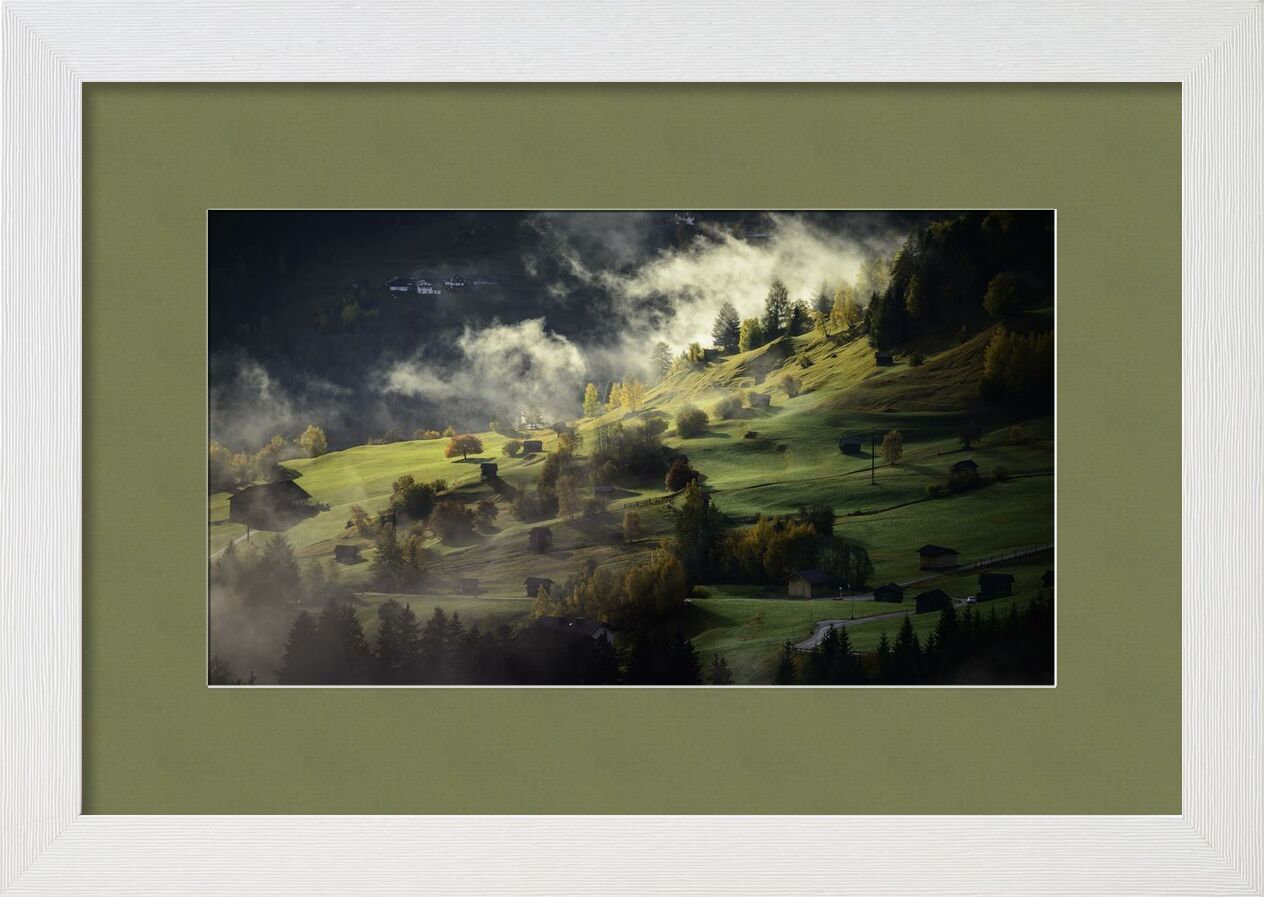 Fog on the hill from Aliss ART, Prodi Art, fog, hills, landscape, mist, nature, trees