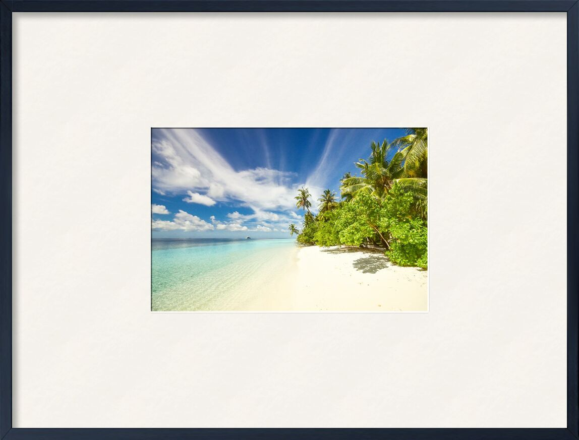 Island de Aliss ART, Prodi Art, plage, calme, nuages, exotique, idyllique, île, océan, paisible, les plantes, silencieux, sable, scénique, mer, paysage marin, rivage, ombre, ciel, tranquille, des arbres, eau, cocotiers, palmiers, recours
