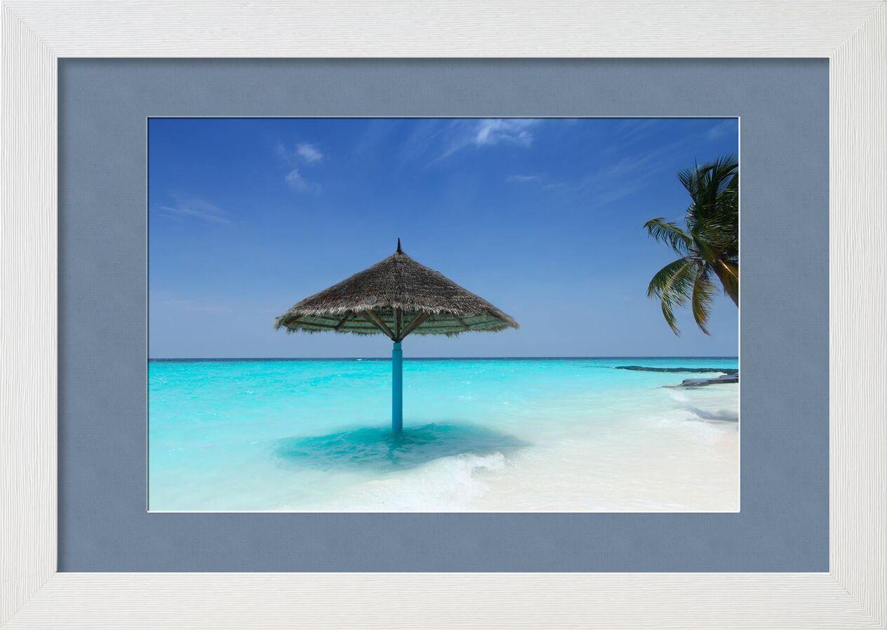 Maldive from Aliss ART, Prodi Art, beach, beautiful, color, idyllic, island, nature, ocean, paradise, parasol, relaxation, resort, sand, sand beach, sea, seascape, seashore, sky, summer, Sun, travel, tropical, turquoise, vacation, water, maldives, palm tree
