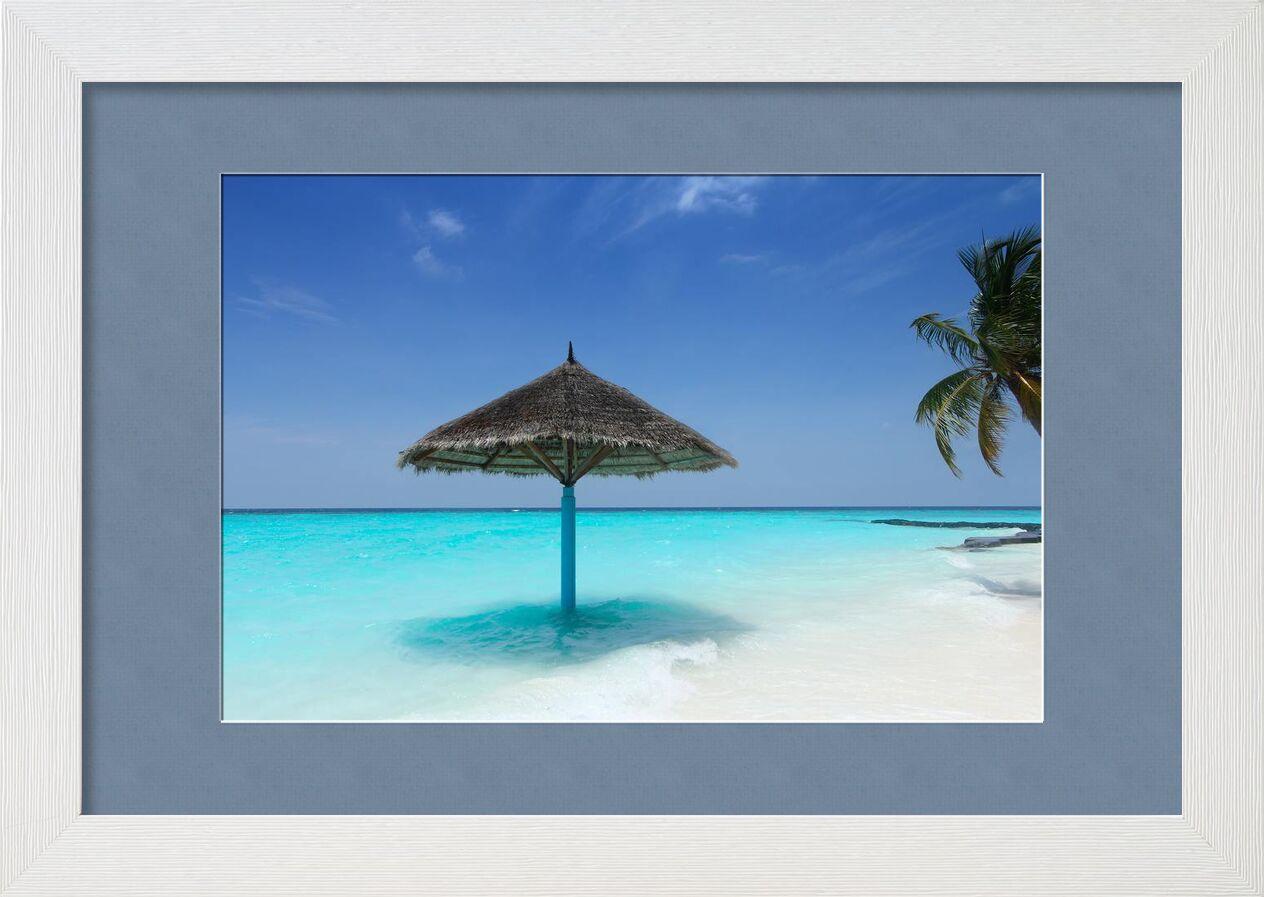 Maldive de Aliss ART, Prodi Art, palmier, Maldives, eau, vacances, turquoise, tropical, Voyage, soleil, été, ciel, rivage, paysage marin, mer, plage de sable, sable, recours, relaxation, parasol, paradis, océan, nature, île, idyllique, Couleur, beau, plage