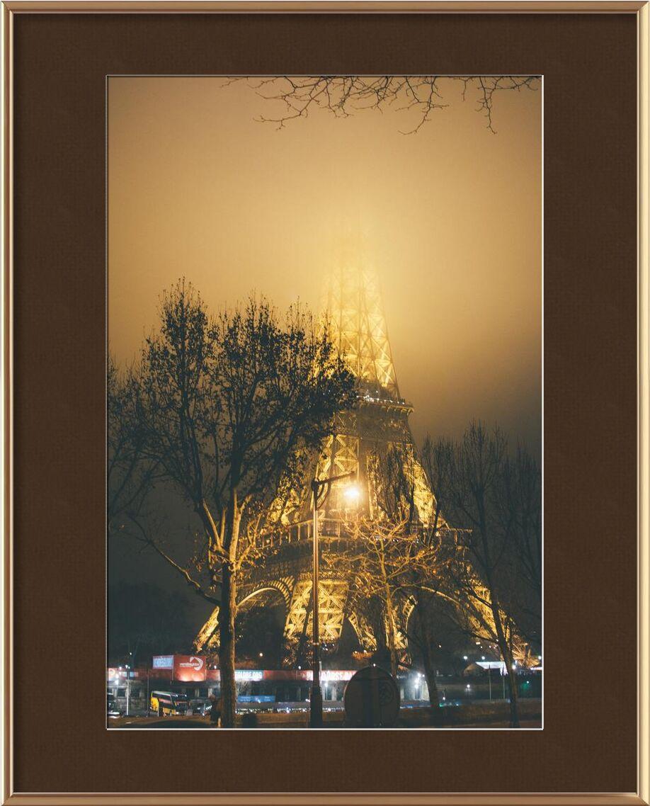 La dame de fer masquée from Aliss ART, Prodi Art, city, Eiffel Tower, evening, fog, foggy, France, hazy, , illuminated, lights, mist, misty, night, outdoors, Paris, tower, trees, , steel structure, street lamps, street lights, tree branches