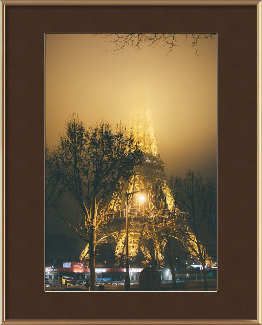 The masked iron lady from Aliss ART, Prodi Art, tree branches, street lamps, steel structure, 4k wallpaper, trees, tower, Paris, outdoors, night, lights, illuminated, HD wallpaper, France, foggy, fog, evening, Eiffel Tower, city