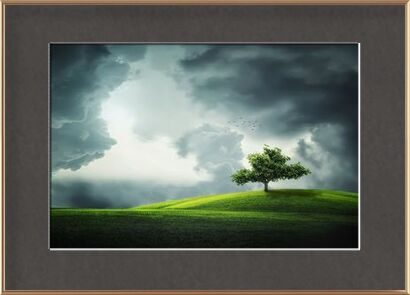 The tree from Pierre Gaultier, Prodi Art, Art photography, Framed artwork, Prodi Art
