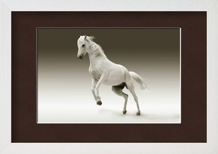 Horse from Pierre Gaultier, Prodi Art, Art photography, Framed artwork, Prodi Art