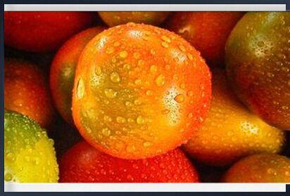 Wet tomatoes from Pierre Gaultier, VisionArt, Art photography, Framed artwork, Prodi Art