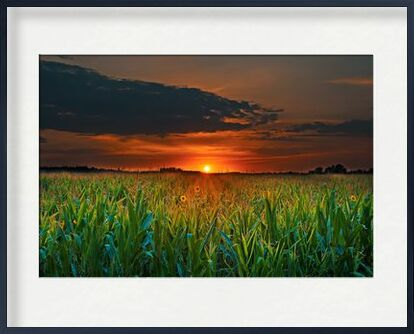 Crépuscule from Aliss ART, Prodi Art, Art photography, Framed artwork, Prodi Art