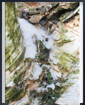 Pureté divine de Marie Guibouin, VisionArt, Photographie d'art, Œuvre encadrée, Prodi Art