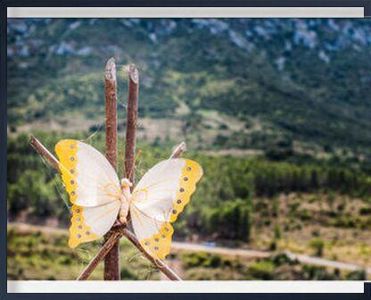 Déploie tes ailes de Marie Guibouin, VisionArt, Photographie d'art, Œuvre encadrée, Prodi Art