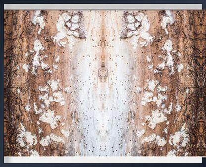 Que la lumière soit from Marie Guibouin, VisionArt, Art photography, Framed artwork, Prodi Art