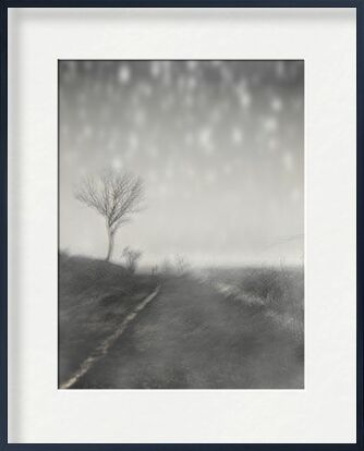 The winter path from Adam da Silva, VisionArt, Art photography, Framed artwork, Prodi Art