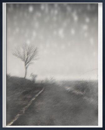 The winter path from Adam da Silva, Prodi Art, Art photography, Framed artwork, Prodi Art