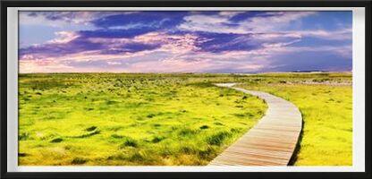 Dans la prairie from Aliss ART, Prodi Art, Art photography, Framed artwork, Prodi Art