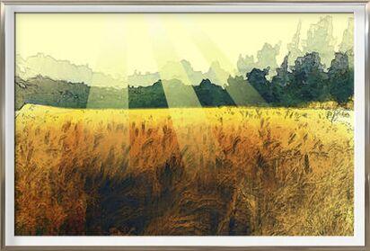 The wheat and its sun from Adam da Silva, Prodi Art, Art photography, Framed artwork, Prodi Art