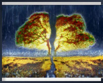 From seed to trunk from Adam da Silva, Prodi Art, Art photography, Framed artwork, Prodi Art