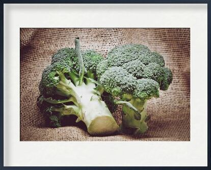 Broccoli from Pierre Gaultier, Prodi Art, Art photography, Framed artwork, Prodi Art