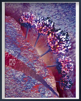気5.1 de Maky Art, Prodi Art, Photographie d'art, Œuvre encadrée, Prodi Art