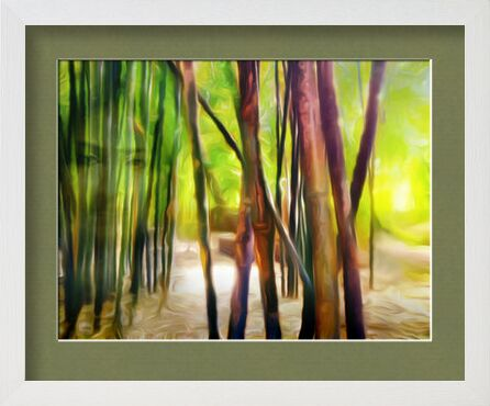 Behind the bamboos from Adam da Silva, VisionArt, Art photography, Framed artwork, Prodi Art