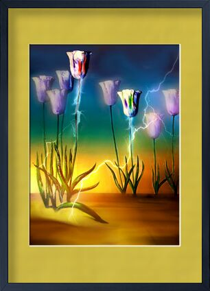 Vital energy from Adam da Silva, Prodi Art, Art photography, Framed artwork, Prodi Art
