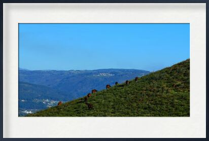 chevaux sauvages from ivephotography, VisionArt, Art photography, Framed artwork, Prodi Art