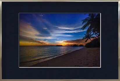 Tropical from Aliss ART, Prodi Art, Art photography, Framed artwork, Prodi Art