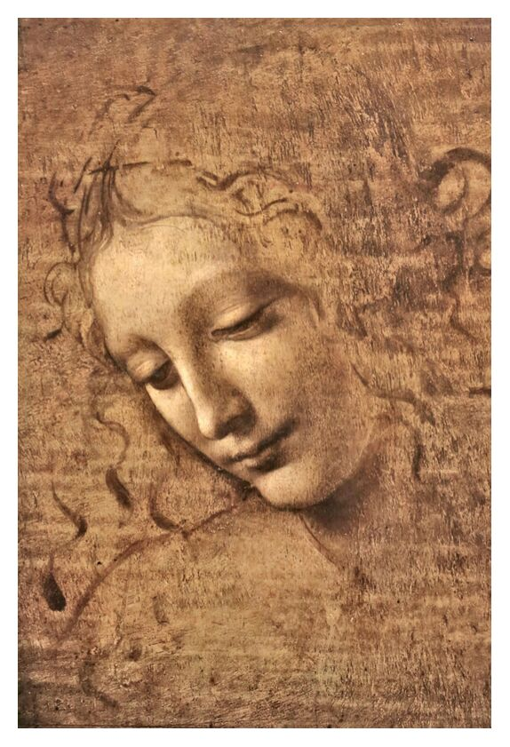 La Scapigliata - Leonardo da Vinci from AUX BEAUX-ARTS, Prodi Art, woman, portrait, Leonard de Vinci, pencil drawing