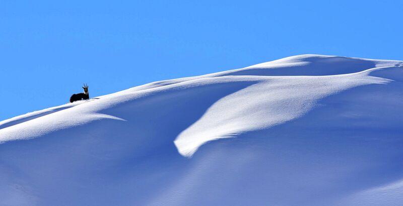 Douce d'Esprit de Romain DOUCELIN Decor Image